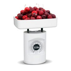 Fit & Fresh Food Scale | Bulu Box - sample superior vitamins and supplements